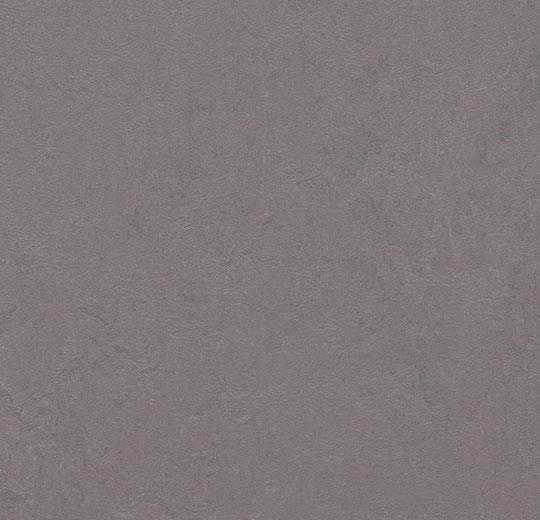 Marmoleum Concrete stella