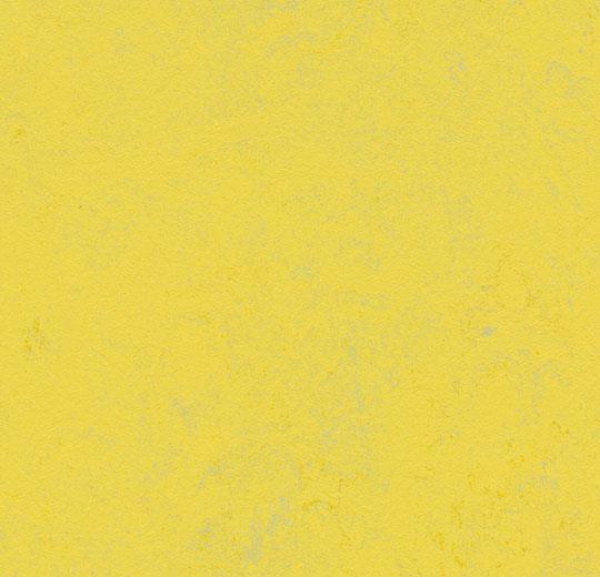 Marmoleum Concrete yellow glow