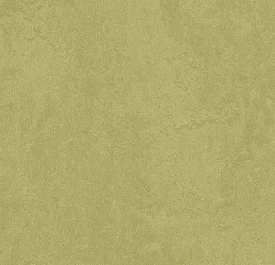 Marmoleum fresco Avocado