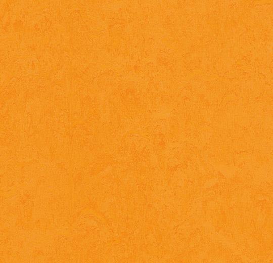 Marmoleum fresco Marigold